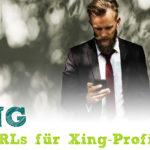 Schöne Kurz-URLs für Xing-Profile